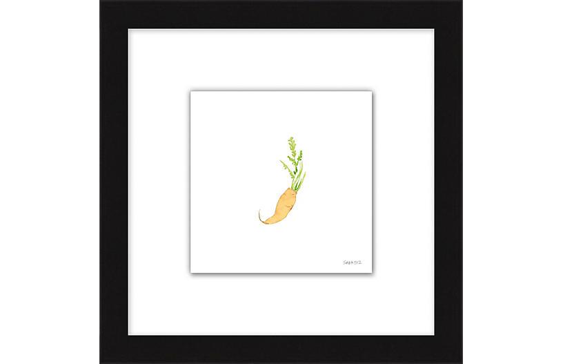 Sara Fitz, Carrot 2