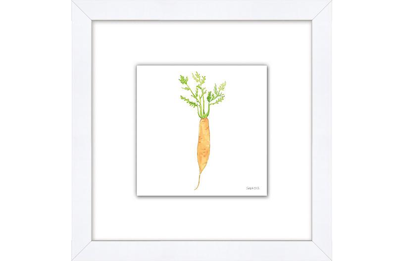 Sara Fitz, Carrot 4