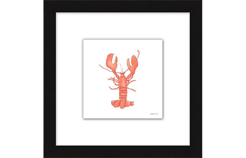 Sara Fitz, Lobster