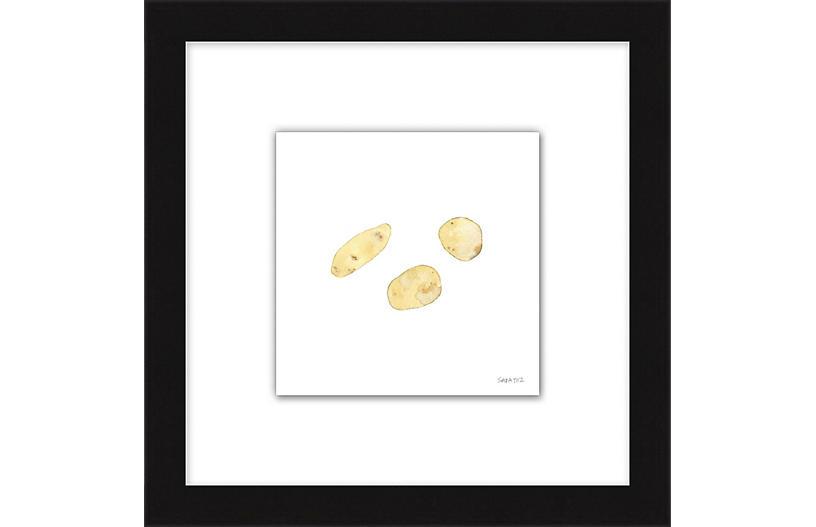 Sara Fitz, Potato Group