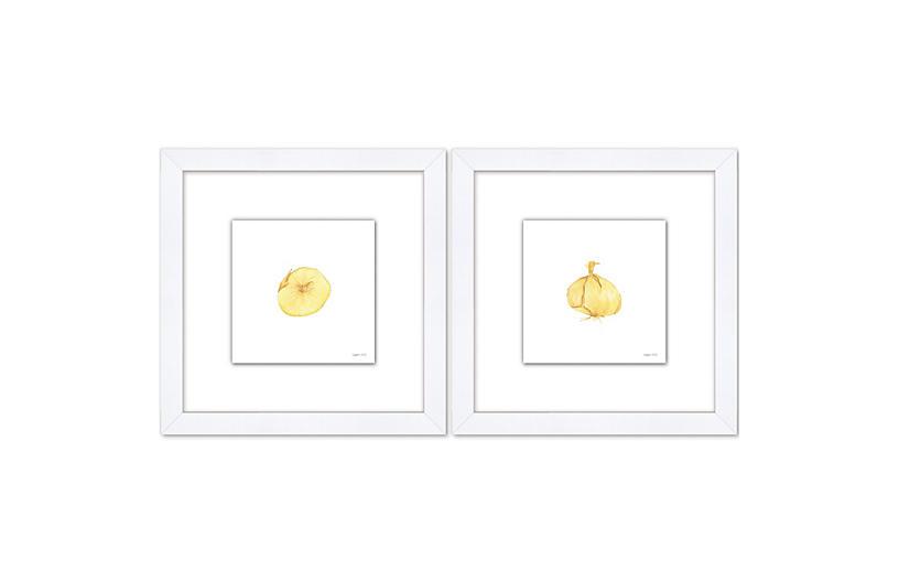 Sara Fitz, Onion Set