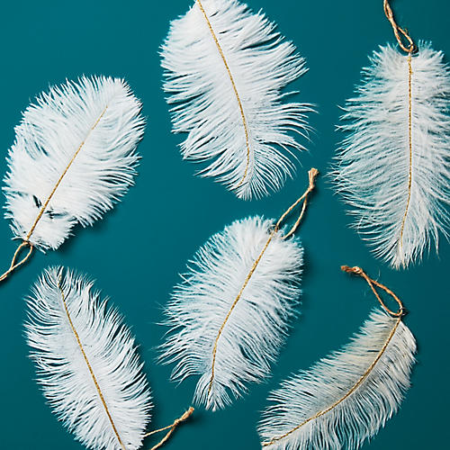 S/6 Ostrich Feather Ornaments, White/Gold