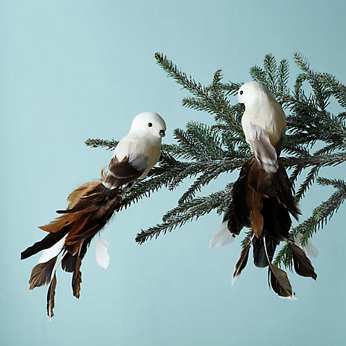 Asst. of 2 Feathered Bird Ornaments, Beige/Brown