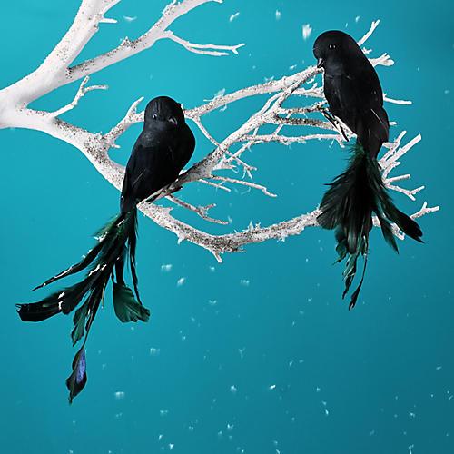 Asst. of 2 Feathered Bird Ornaments, Black/Green