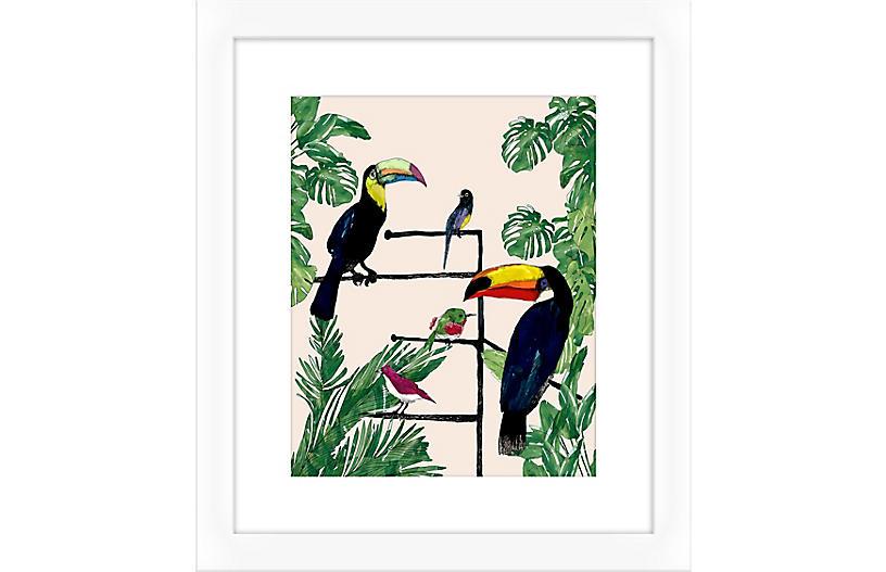 Jaybird Illustration, Toucan