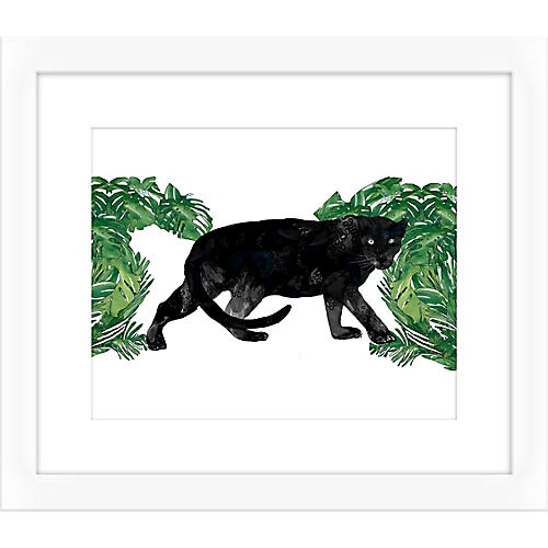 Jaybird Illustration, Black Panther