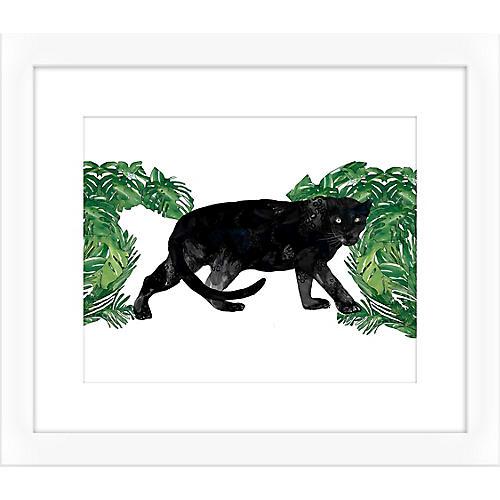 Jaybird Illustration, Black Panther