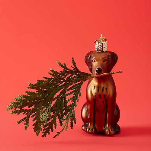 Chocolate Labrador Ornament, Brown