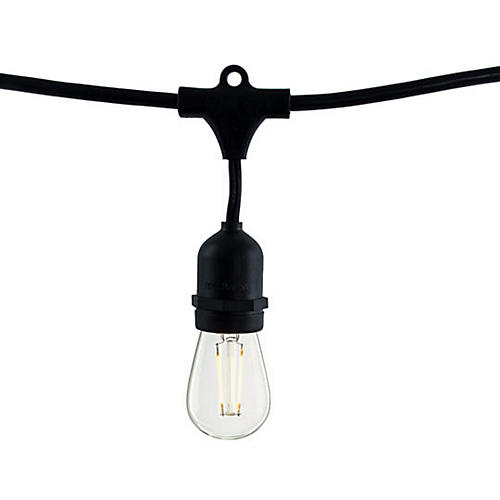 Carter String Lights, Black