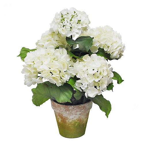 """22"""" Five Blossom Hydrangea w/ Pot, Faux"""