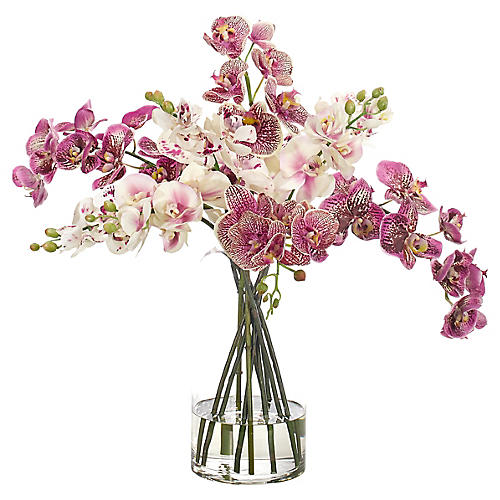 "23"" Orchid in Cylinder Vase, Faux"