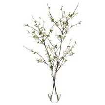 Floral & Greenery Header Image
