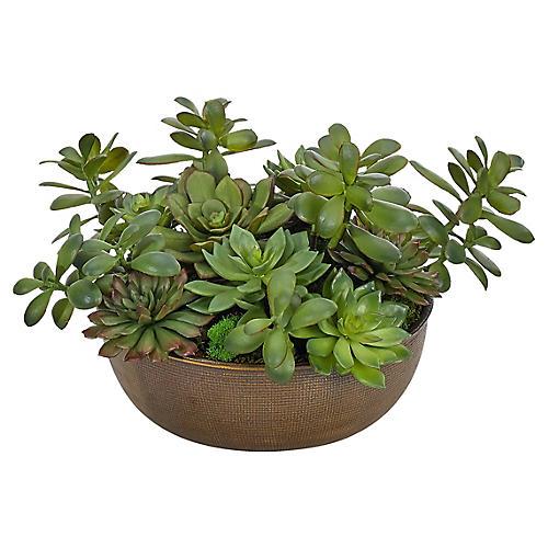 "17"" Succulents in Bowl, Faux, Large"