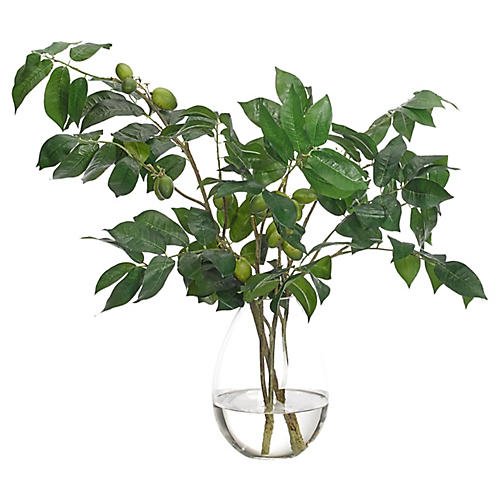 "22"" Olive Branch in Teardrop Vase, Faux"