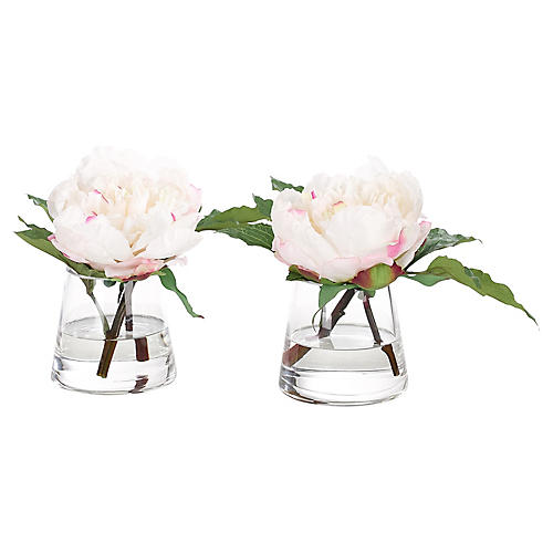 S/2 Peonies in Pyramid Vase, Faux