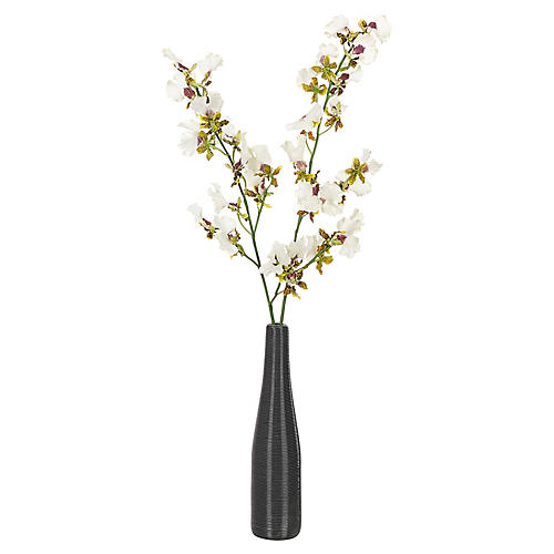 "13"" S/2 Dancing Orchids in Coil Bottle, Faux"