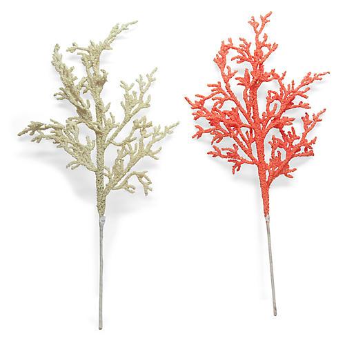Asst. of 2 Ornamental Picks, Cream/Coral