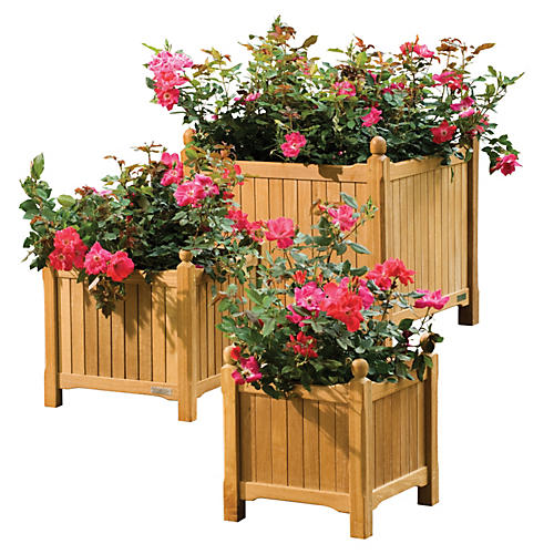 Colada Planter 3-PC Set