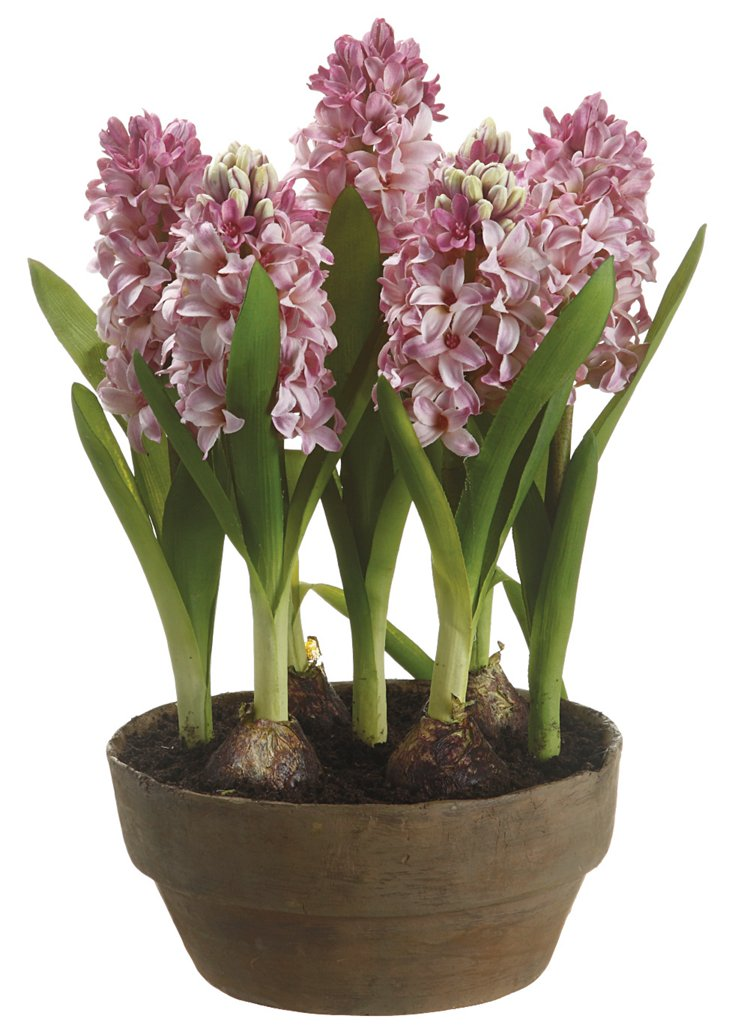 "14"" Hyacinths in Pot, Faux"