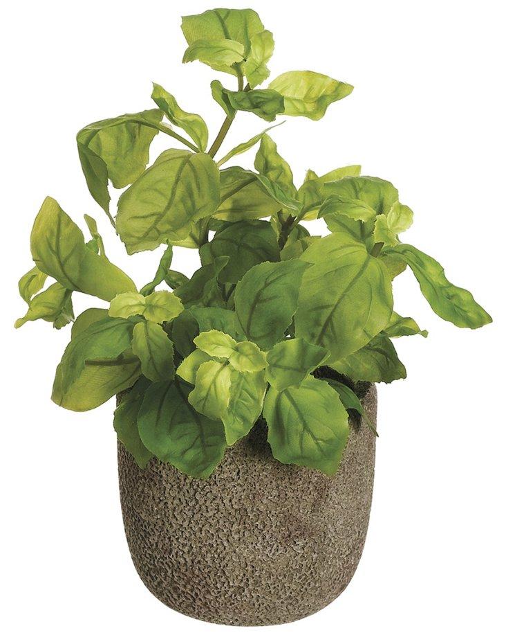 "10"" Basil in Pot, Faux"