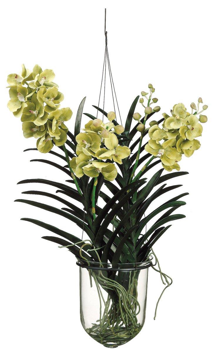 "31"" Vanda Orchid Hang Plant, Faux"