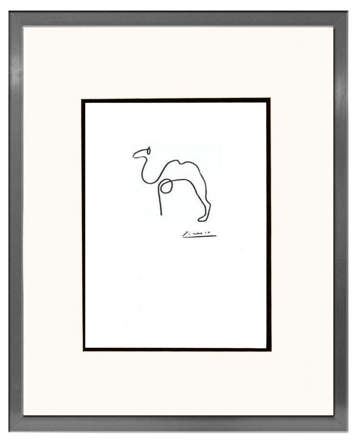 Pablo Picasso, Camel