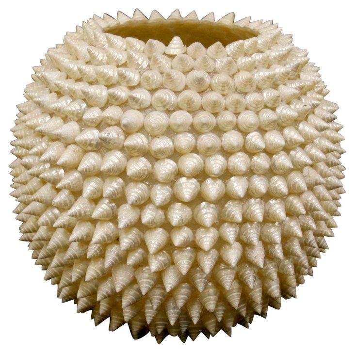 "9"" Trochus Shell Vase, Cream"