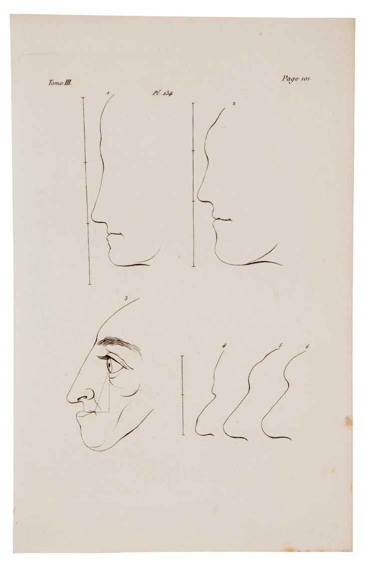 Facial Profiles Antique Print
