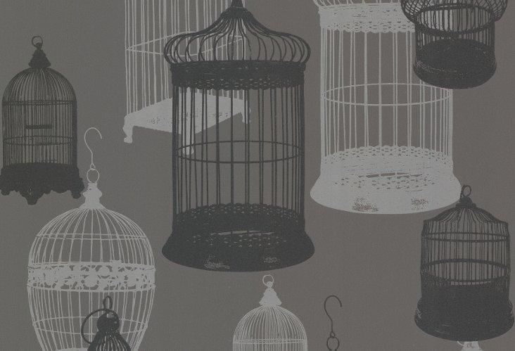 Avian Birdcages, Charcoal