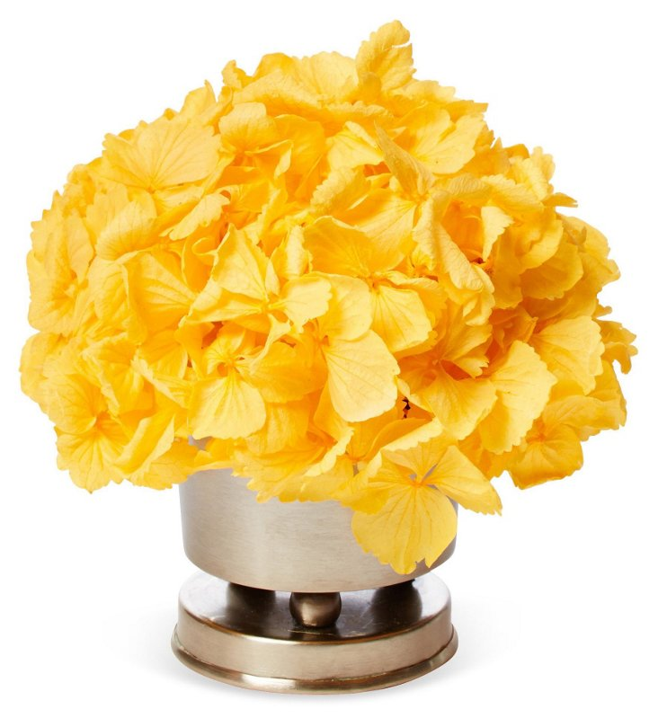 Hydrangea in Round Pewter Holder, Yellow