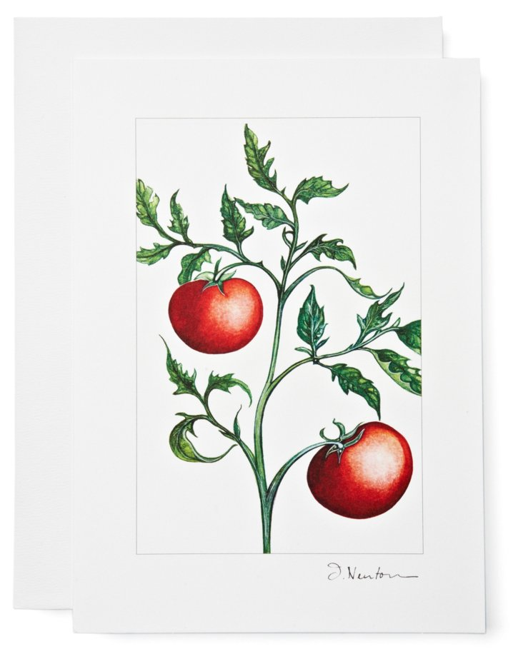 S/12 Note Cards, Tomatoes