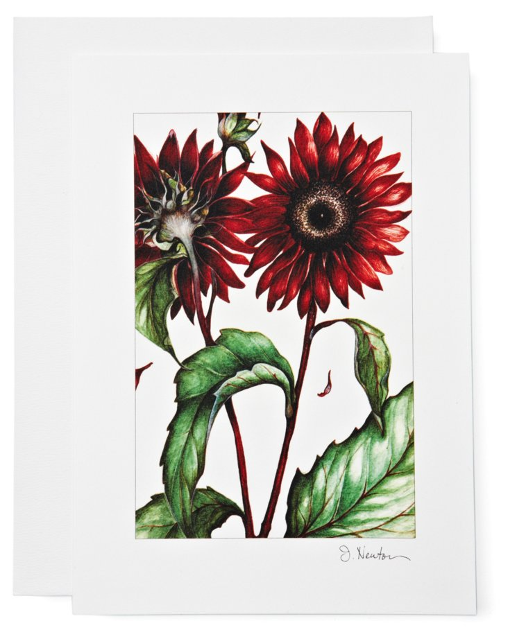 S/12 Note Cards, Sunflowers