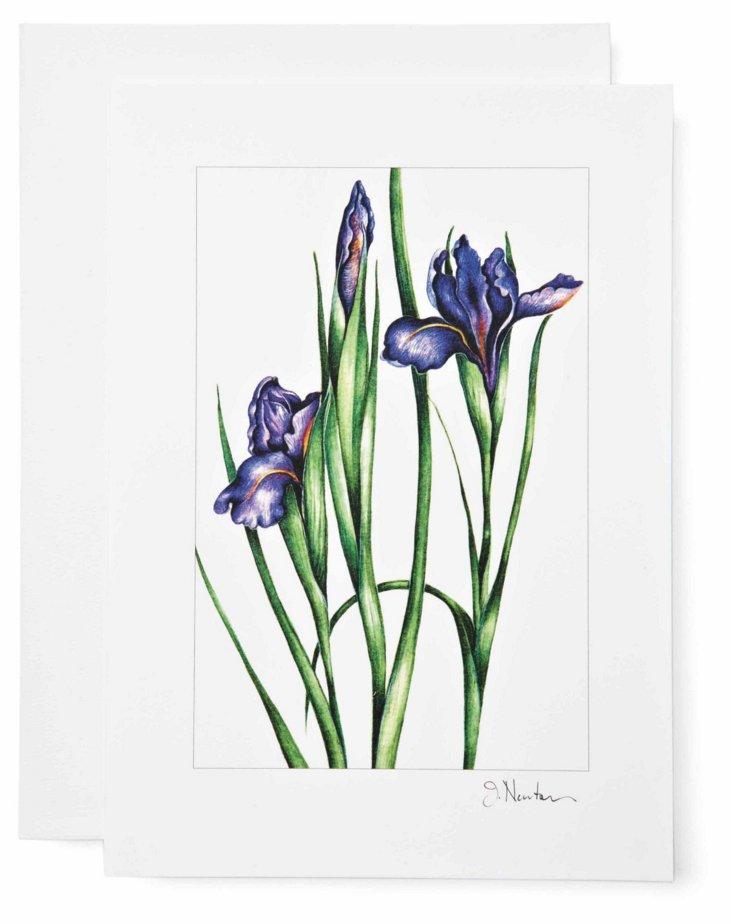 S/12 Note Cards, Iris