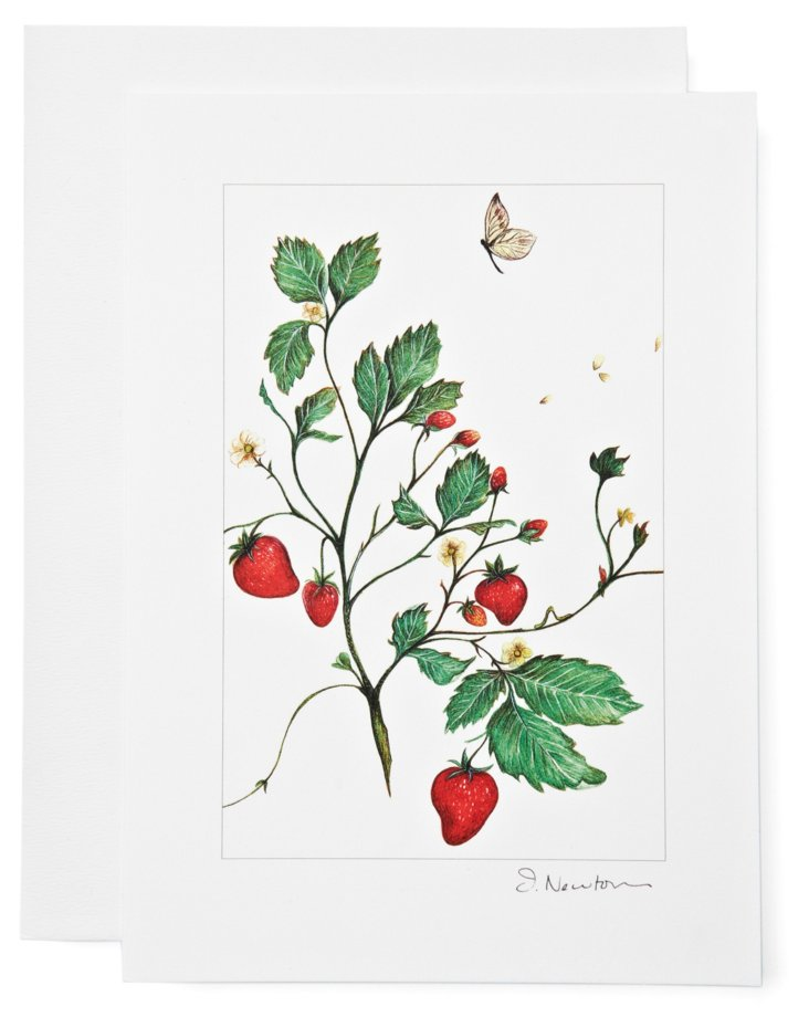 S/12 Note Cards, Strawberries