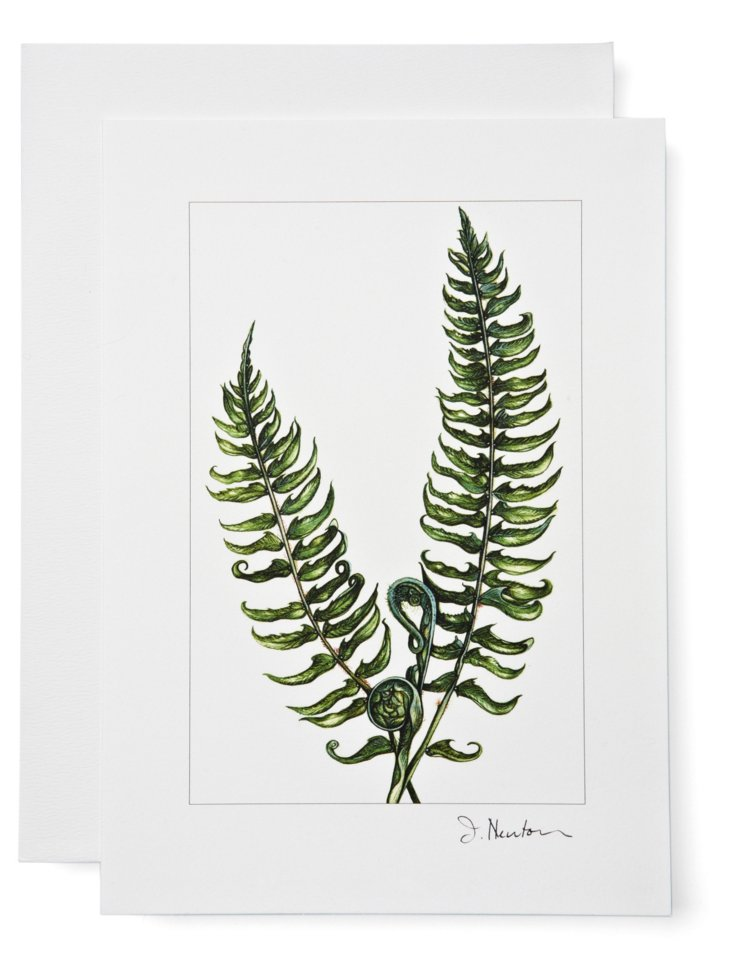 S/12 Note Cards, Fern