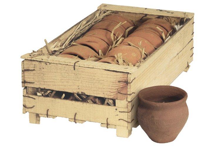 S/12 Terracotta Pots w/ Crate