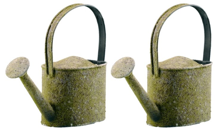 S/2 Watering Cans w/ Handle, Mossy Green