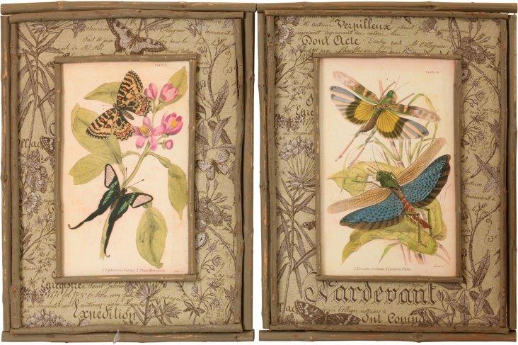 Floral Prints in Twig Frames, Pair