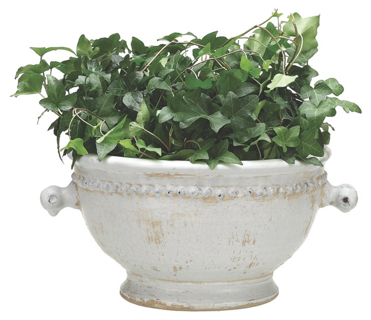 "15"" Tuscany Terracotta Planter, White"