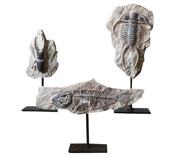 Fish Fossil on Stand, Beige