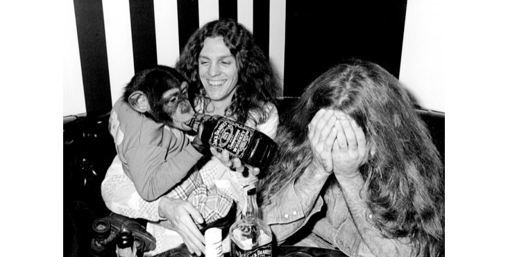 Lynyrd Skynyrd with Zip the Chimp