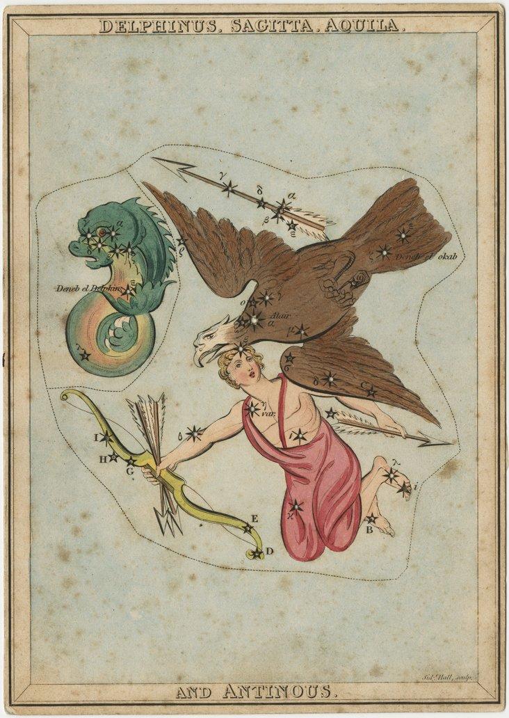 Delphinus, Sagitta, Aquila Framed Print