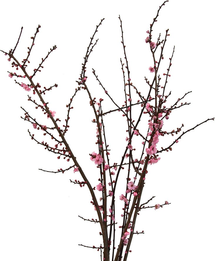 """S/8 36"""" Cherry Blossom Branches"""