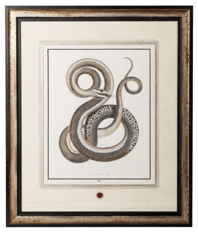 Snake Print II