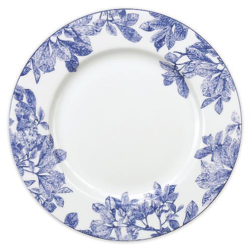 """Arbor Rimmed Dinner Plate, 11"""""""