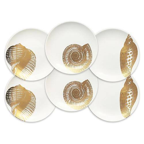 S/6 Shells Dessert Plates, White/Gold