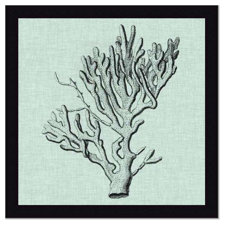 Serene Coral III