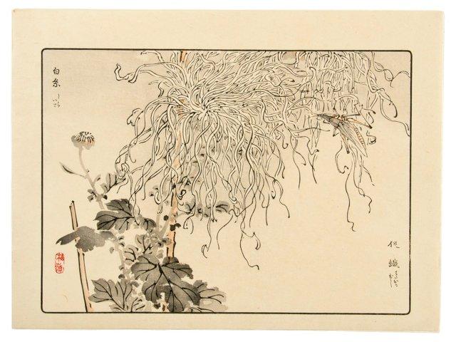 Antique Kono Bairei Original Print I