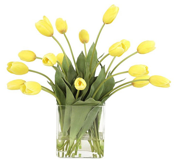 Yellow Tulips in Glass Vase