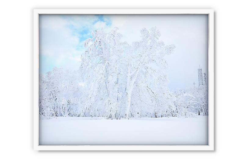 Pascal Shirley, Hokkaido
